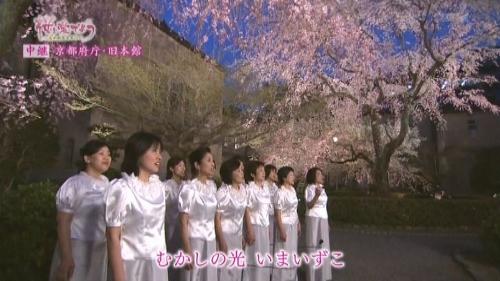 府庁夜桜中継2-2 (500x281).jpg