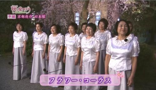府庁夜桜中継1 (500x288).jpg